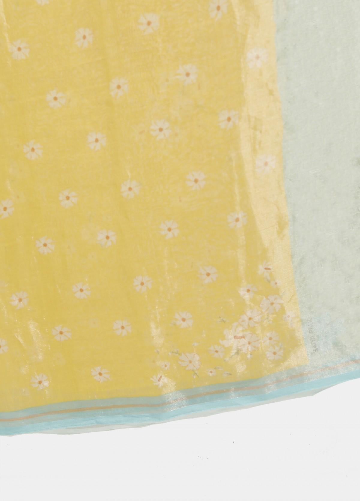 The Shamli Sari